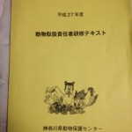 IMG_0375 (480x640)